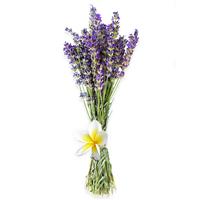 Lavender & Plumeria - Natural Fragrance Oil 1225