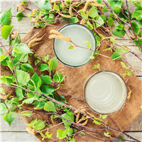 Birch & Watermint - Natural Fragrance Oil 1216