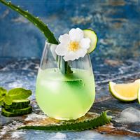 Aloe Water & Jasmine - Natural Fragrance Oil 1215