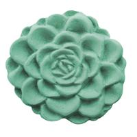 Succulent Soap Mold (MW 426)
