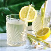 Lemongrass Bamboo - Natural Fragrance Oil 941
