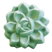 Succulent 2 Soap Mold (MW 249)