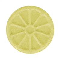 Citrus Slice Soap Mold (MW 97)