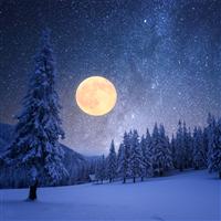Winter Moon Fragrance Oil 1129