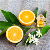 Neroli & Citrus Woods Fragrance Oil 937