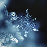 Sparkling Snowflake - EO & FO Blend 518