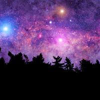 Beneath the Stars Fragrance Oil 341