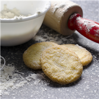 Sugar Cookie Gourmet Fragrance Oil 287