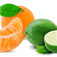 Lime, Basil, Mandarin* Fragrance Oil 418