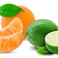 Lime, Basil, Mandarin* - EO & FO Blend 418