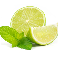 Lime Mint Fragrance Oil 427