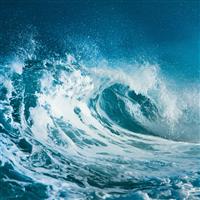 Ocean Water* Fragrance Oil 439