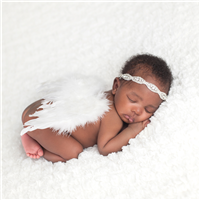 Dream Angel* Fragrance Oil 478