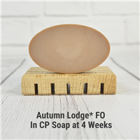 Autumn Lodge* Fragrance Oil 401