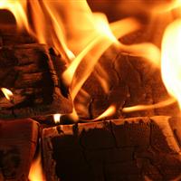 Crackling Firewood Fragrance Oil 618
