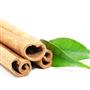 Cinnamon Leaf EO - Certified 100% Pure 702