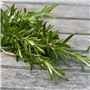 Rosemary EO - Certified 100% Pure 714