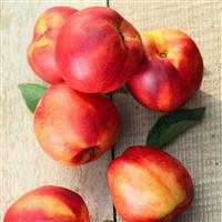 Peach Jubilee Fragrance Oil 389