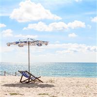 Beach* Fragrance Oil 88