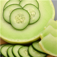 Cucumber Melon Fragrance Oil 122