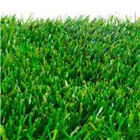 Fresh Cut Grass Fragrance Oil 153