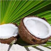 6252-Exotic-Coconut-Fragrance-Oil-112