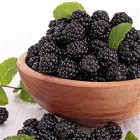 Blissful Blackberry* Fragrance Oil (Special Order)