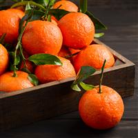 Tangerine - EO & FO Blend 232