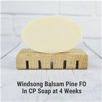 Windsong Balsam Pine FO in CP Soap