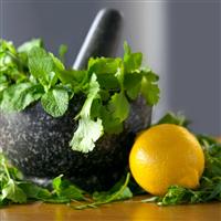 Citrus Cilantro* Fragrance Oil 548