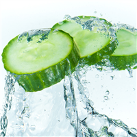 Freshwater Cucumber Fragrance Oil