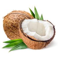 Coconut Fragrance Oil 94