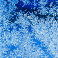 Jack Frost* Fragrance Oil 317