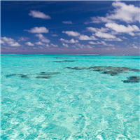 South Pacific Waters Fragrance Oil 564