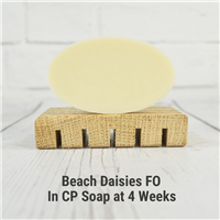 Beach Daisies FO in CP Soap