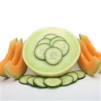 Cucumber Melon* (2010 Ed.) - EO & FO Blend 647