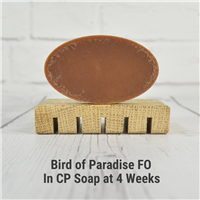 Bird of Paradise FO in CP Soap