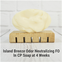 Island Breeze Odor Neutralizing FO in CP Soap