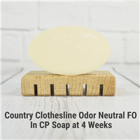 Country Clothesline Odor Neutral FO in CP Soap