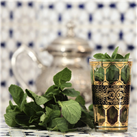 Moroccan Mint Fragrance Oil 430