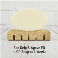 Sea Kelp & Agave FO in CP Soap