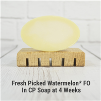 Fresh Picked Watermelon* FO in CP Soap