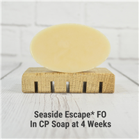 Seaside Escape* Fragrance Oil 651