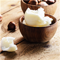 Shea & Coconut Fragrance Oil 638