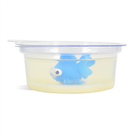 Fish in a Dish Soap Making Kit