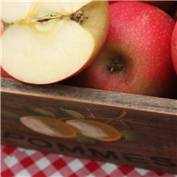 Gingham Apple* Fragrance Oil 758