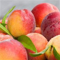 Market Peach* Fragrance Oil 759