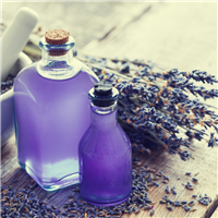 Fabuloso Lavender* Fragrance Oil 386