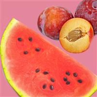 Pink Watermelon Apricot FO 578