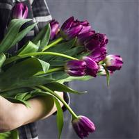 Wild Berry Tulips* Fragrance Oil 603